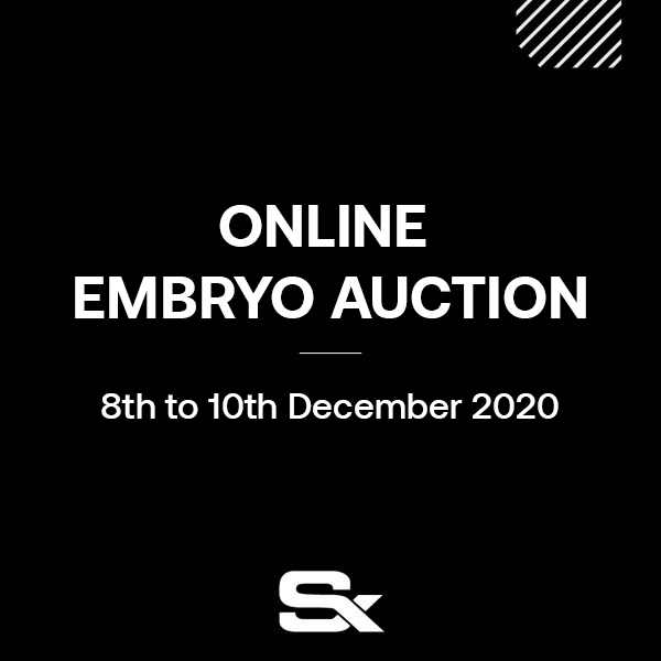 Black image displaying the Stephex Online Embryo Auction Dates and Details